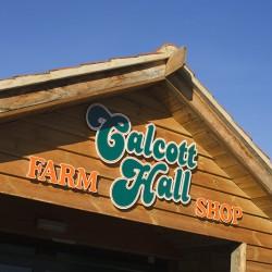 Calcott Hall (2)