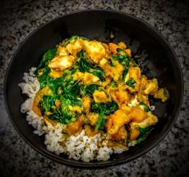 thai-green-chicken-curry-6