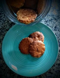 Gluten Free Almond Biscotti 10