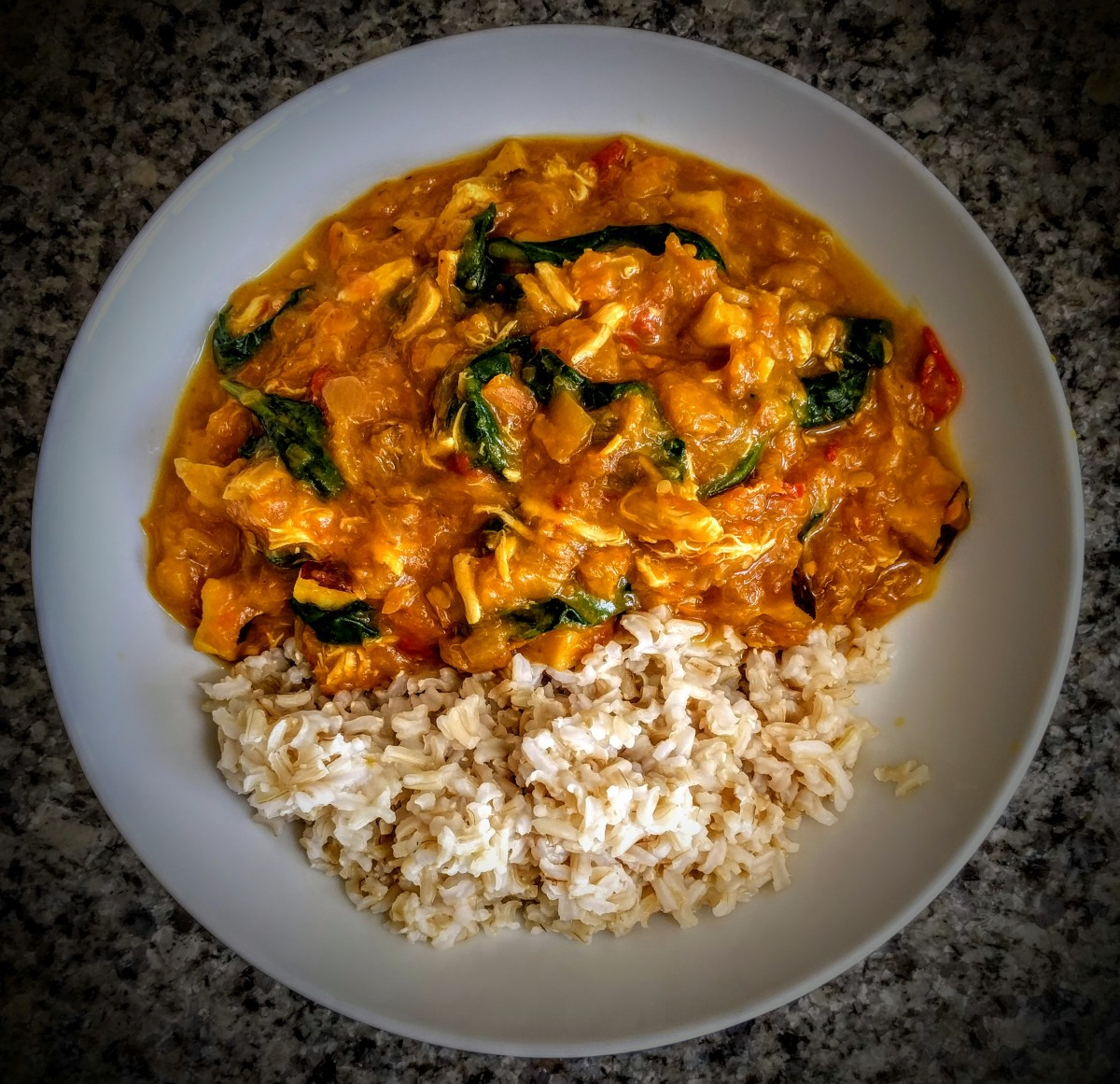 Spicy Chicken Coconut Curry 1